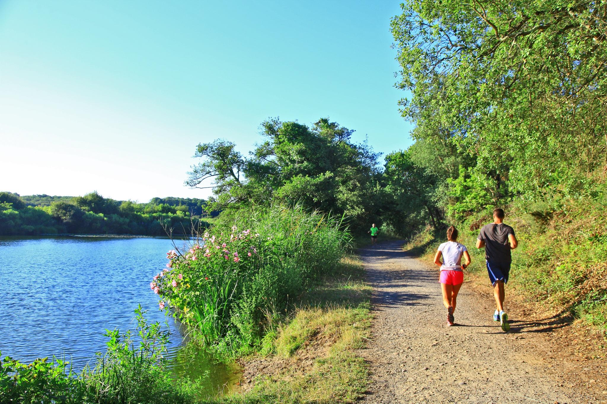Chemin de course à pied autour de l'étang de Moïsan