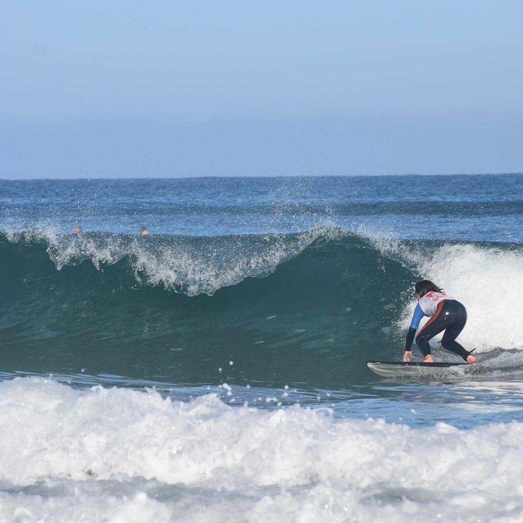 SURF-EXPERT—1-