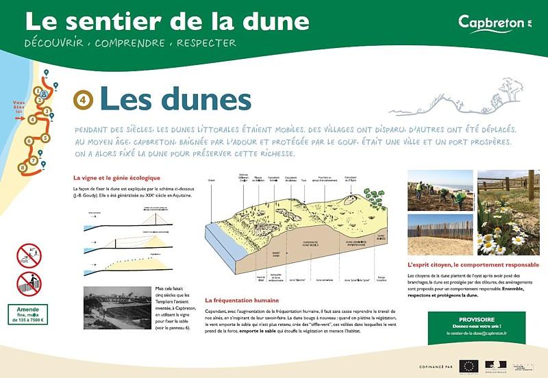 sentier-de-la-dune5