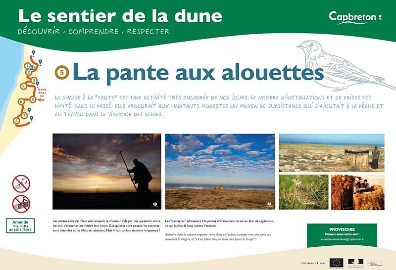 sentier-de-la-dune6