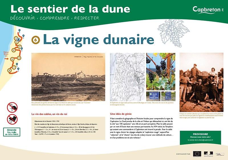 sentier-de-la-dune7