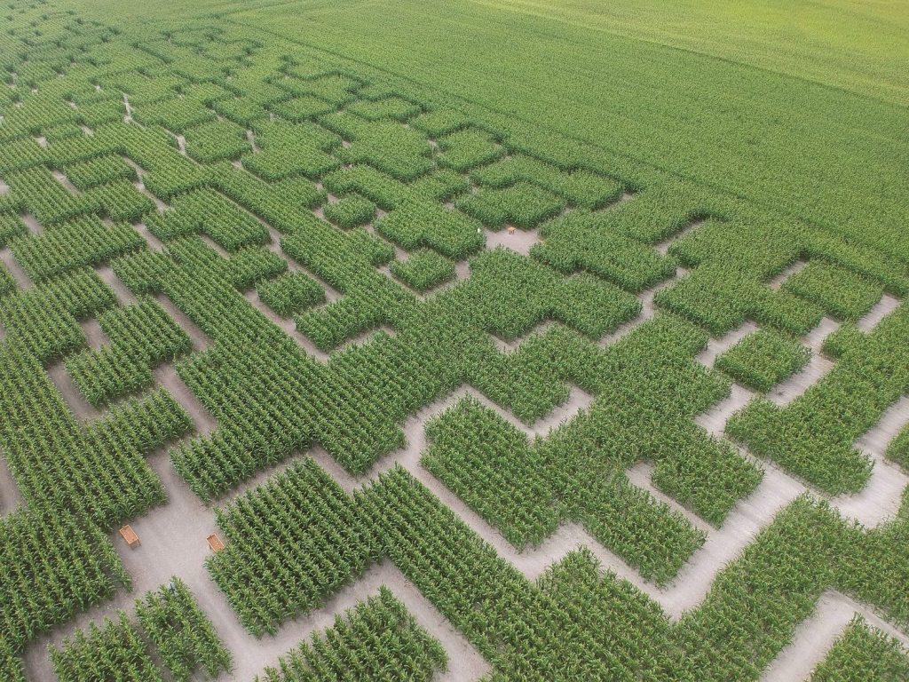 vue-aerienne-3-pop-corn-labyrinthe