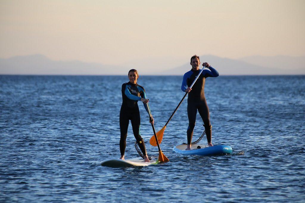 webbackground-cours-paddle