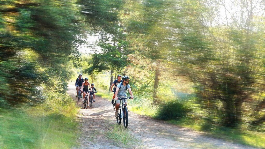webjerry-bike-bellocq-seignosse-2018-6762